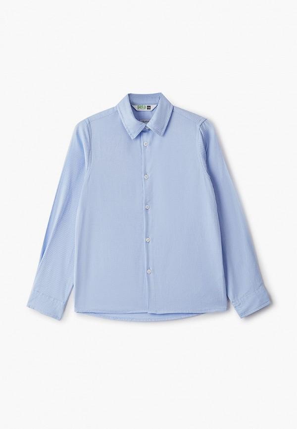 Рубашка для мальчика Sela цвет голубой