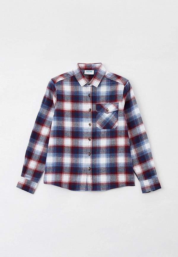 Рубашка ACOOLA MP002XB015I4CM152