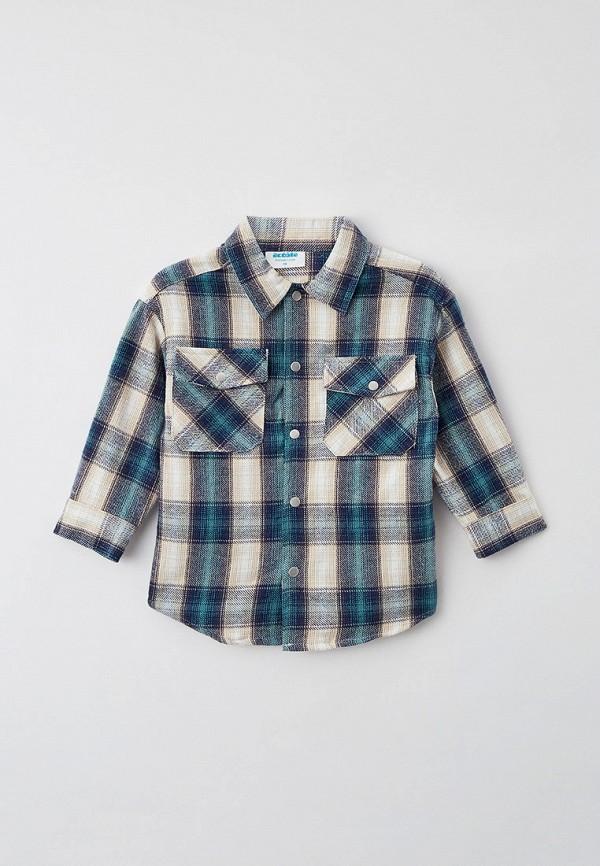 рубашка acoola для мальчика, разноцветная