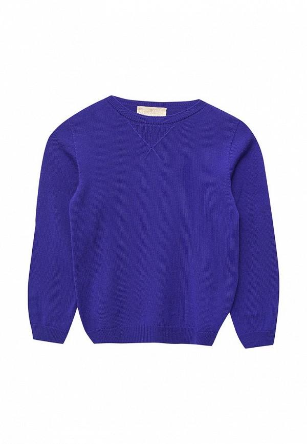 пуловер r&i малыши, синий