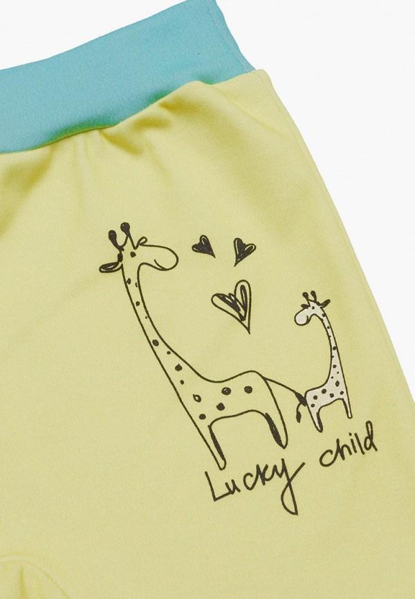 Брюки для мальчика 3 шт. Lucky Child цвет разноцветный  Фото 7