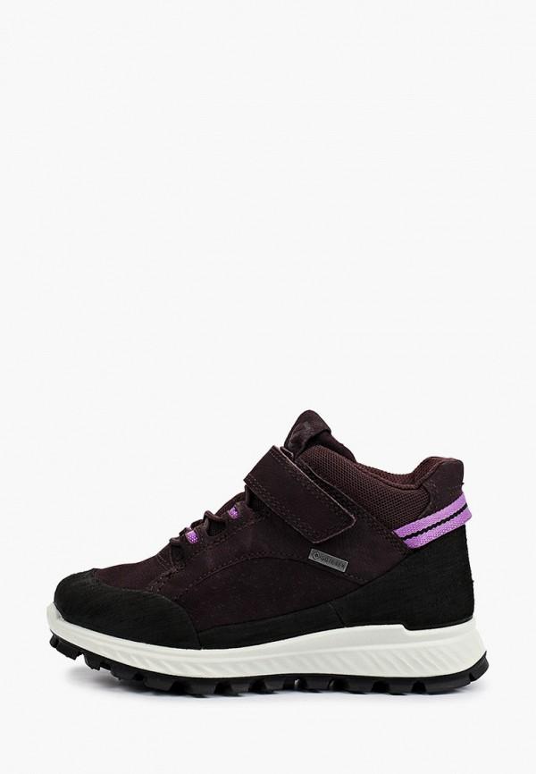 кроссовки ecco малыши, фиолетовые