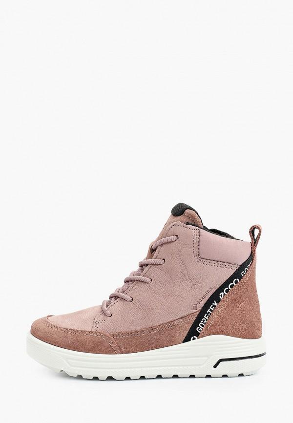 ботинки ecco малыши, розовые