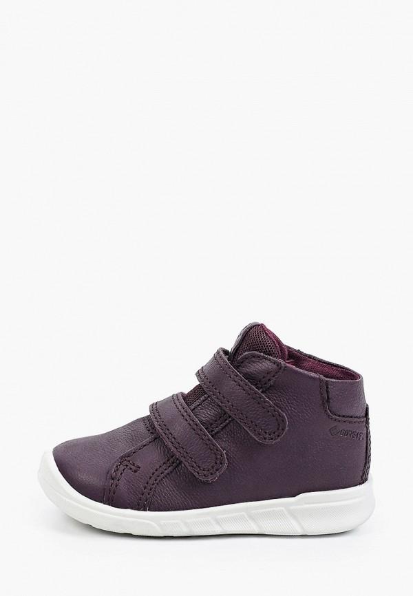ботинки ecco малыши, бордовые