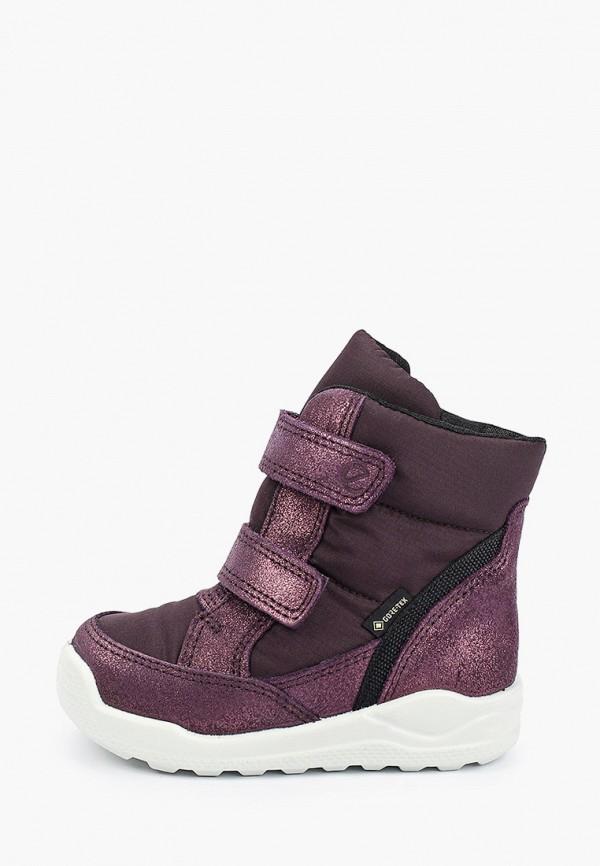 ботинки ecco малыши, фиолетовые