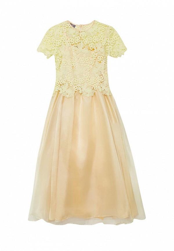Платье Shened Shened MP002XG004G7 shened платье полина