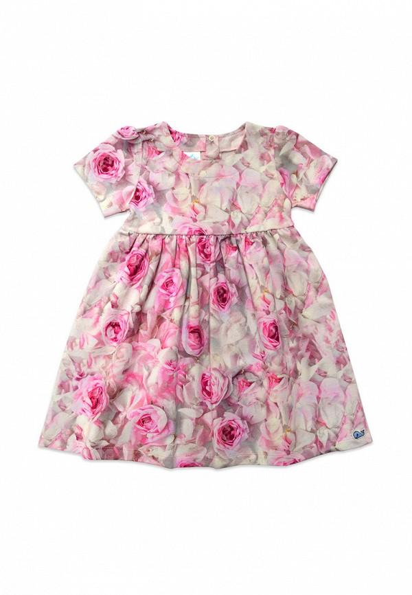 Платье Кит Кит MP002XG00AND платье кит кит mp002xg008gl