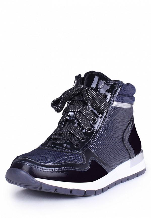 Купить Ботинки T.Taccardi, MP002XG00BNX, синий, Осень-зима 2018/2019