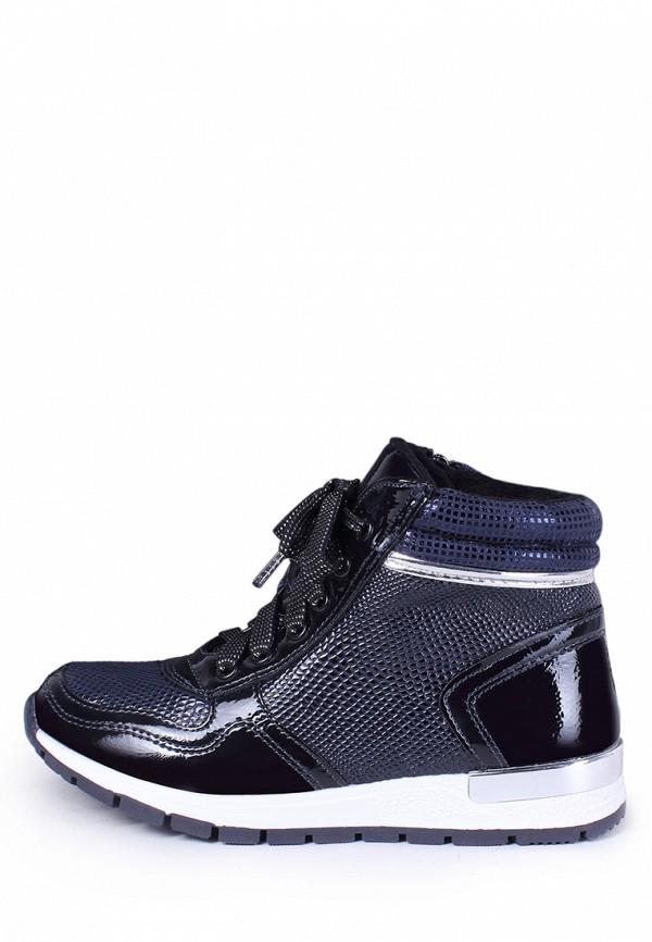 Ботинки для девочки T.Taccardi цвет синий  Фото 7