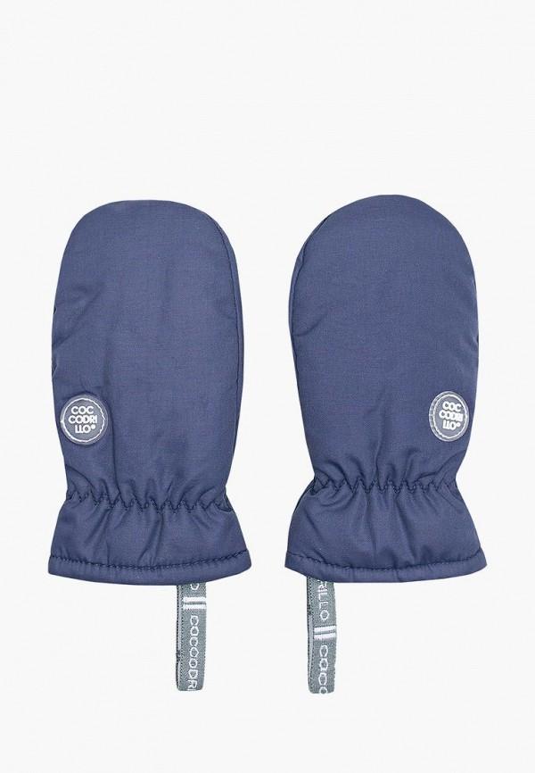варежки coccodrillo для девочки, синие