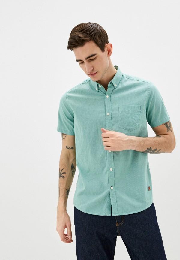 мужская рубашка colin's, зеленая