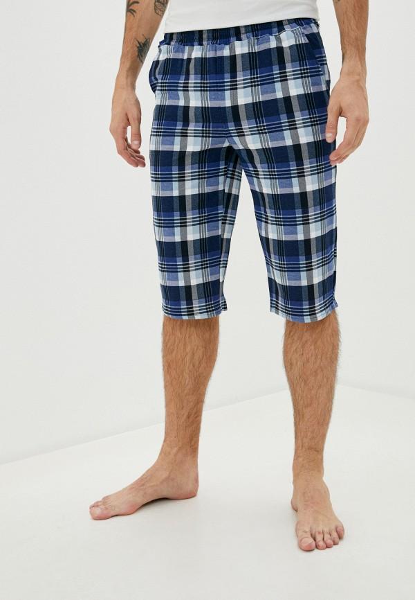 мужские шорты cleo, синие
