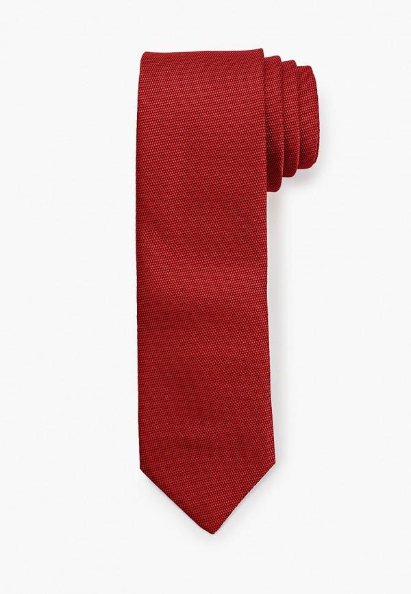 мужские галстуки и бабочки mason grace, бордовые