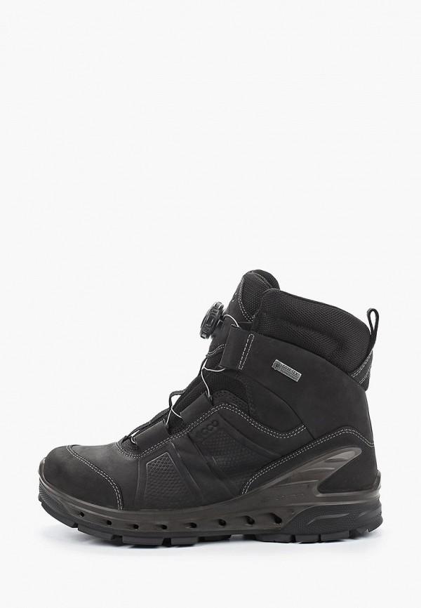 Ботинки трекинговые Ecco Ecco MP002XM0MRDL ботинки ecco winter zone