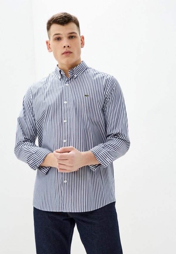 мужская рубашка с длинным рукавом lacoste, серая