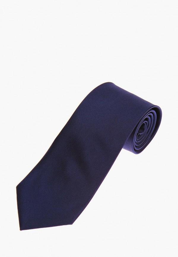 мужские галстуки и бабочки vittorio richi, синие