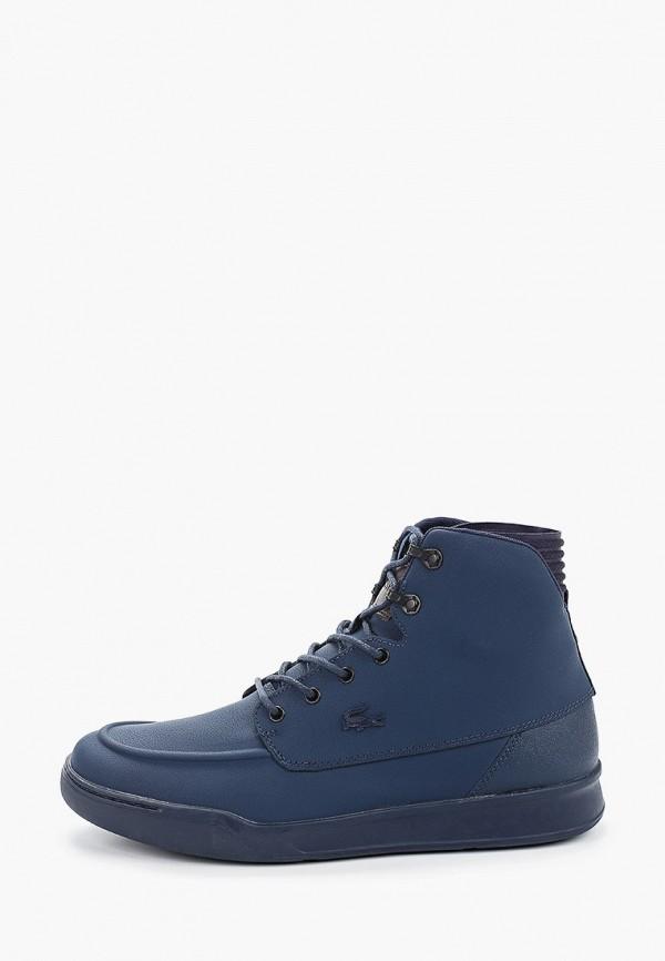мужские высокие кеды lacoste, синие
