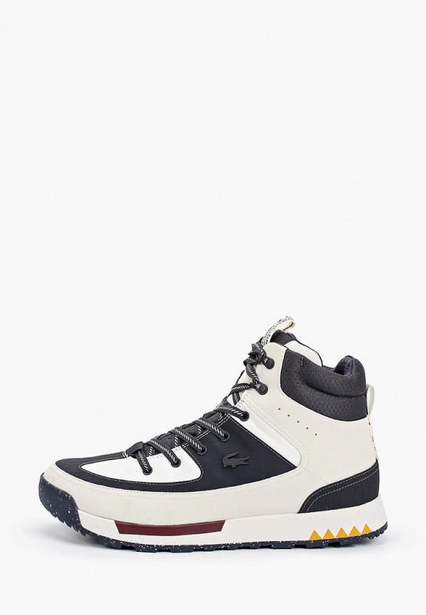 мужские высокие кроссовки lacoste, белые