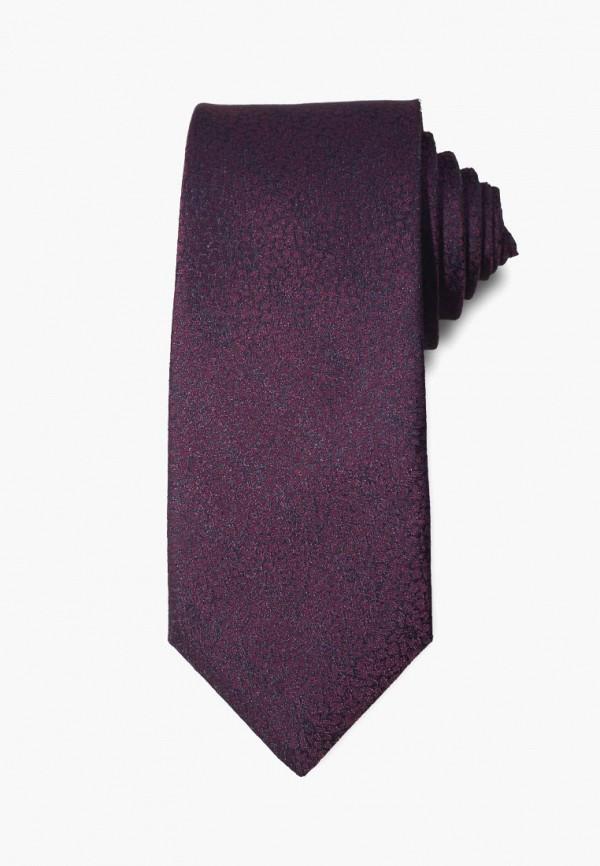 мужские галстуки и бабочки stefano danotelli, фиолетовые