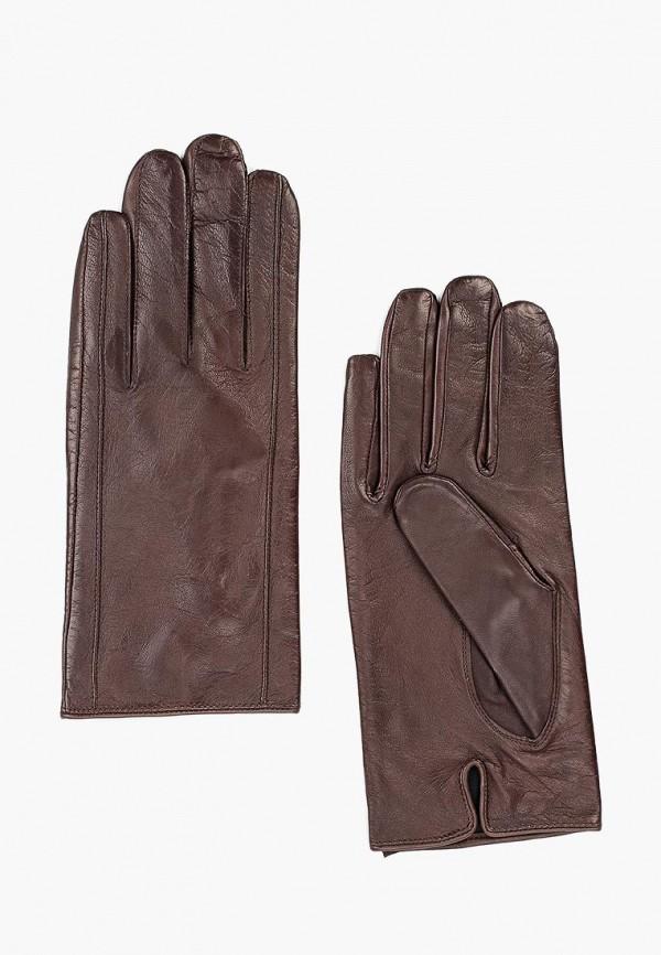 Перчатки Eleganzza Eleganzza MP002XM12HFK