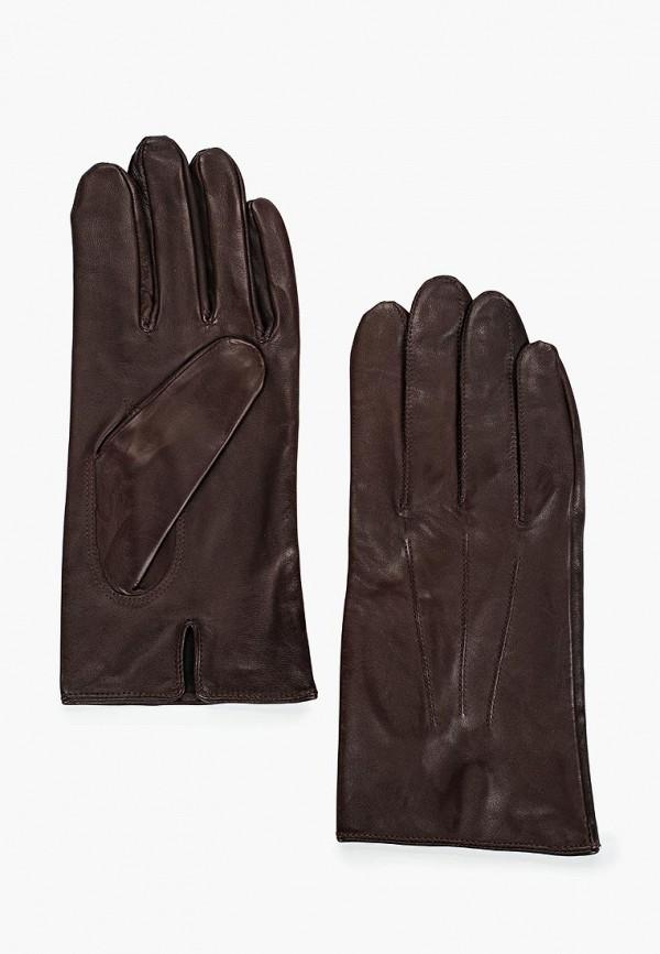 Перчатки Eleganzza Eleganzza MP002XM12HFO