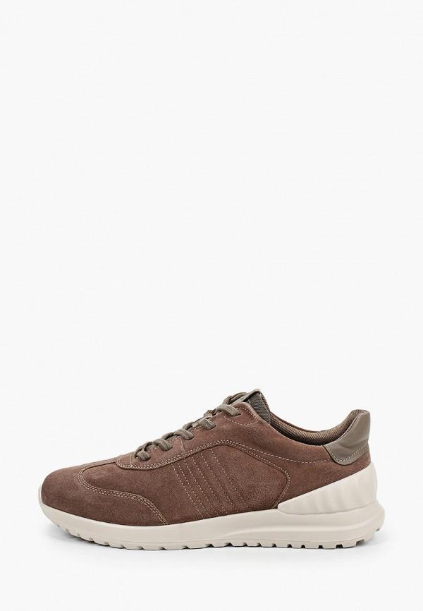 мужские низкие кроссовки ecco, коричневые