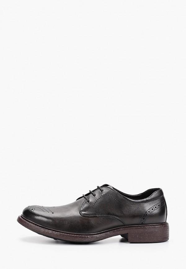 мужские туфли dino ricci, коричневые