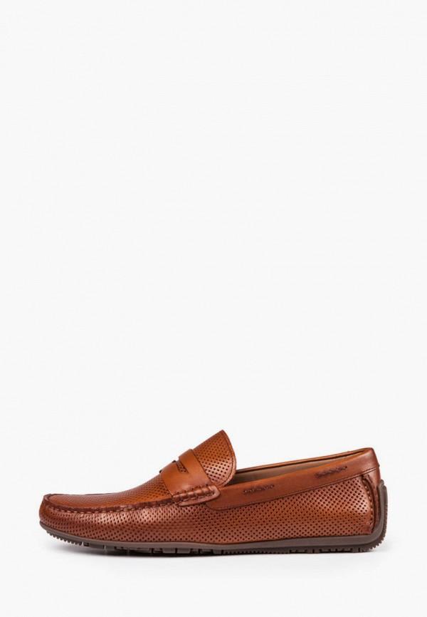 мужские мокасины baldi, коричневые