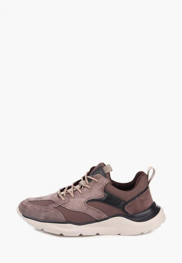 мужские кроссовки ditto, коричневые