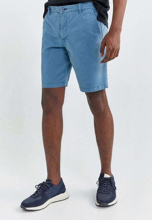 мужские повседневные шорты springfield, голубые