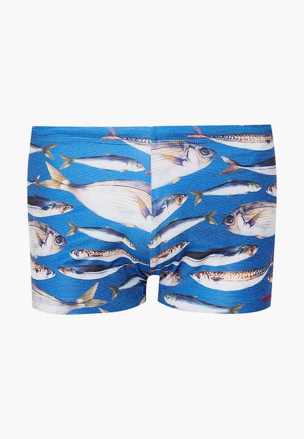 мужские плавки body star, синие