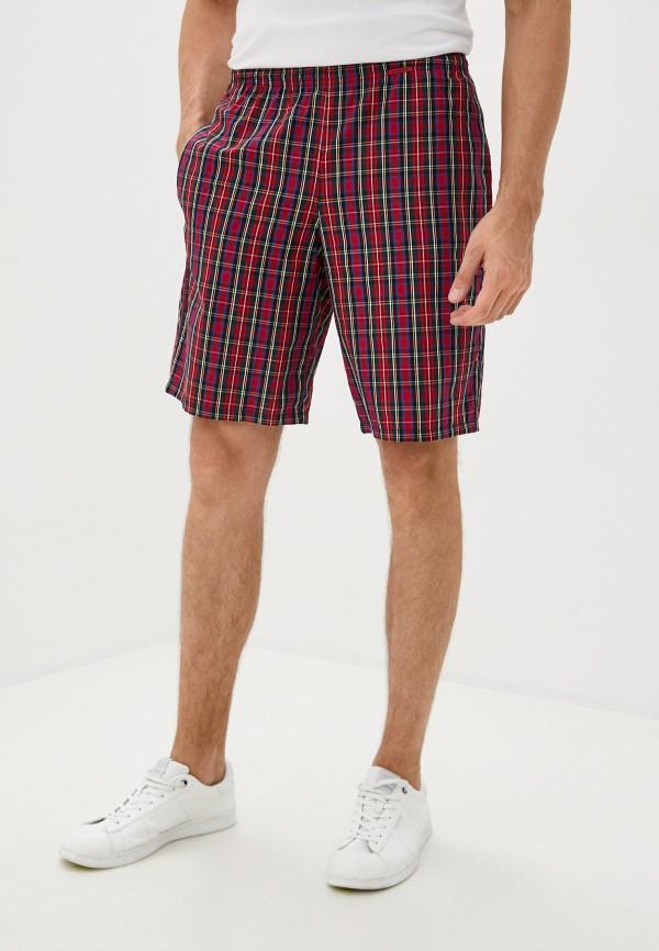 мужские повседневные шорты body star, красные