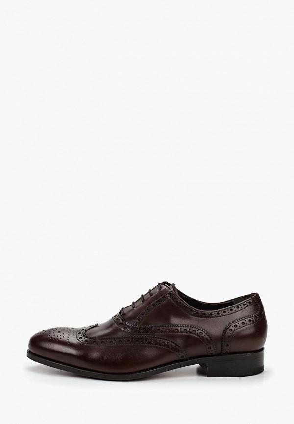 мужские туфли philippe anders, коричневые