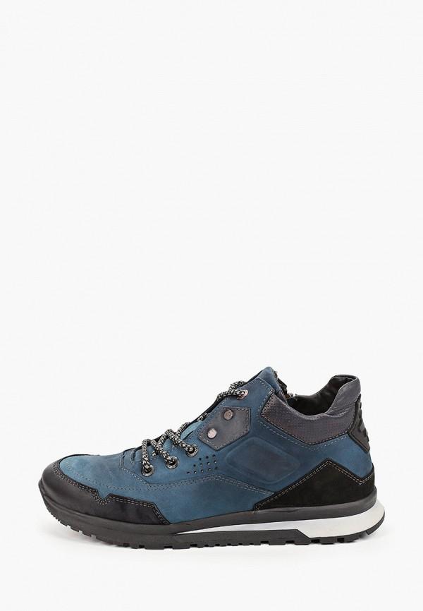 Ботинки Emanuele Gelmetti. Цвет: синий