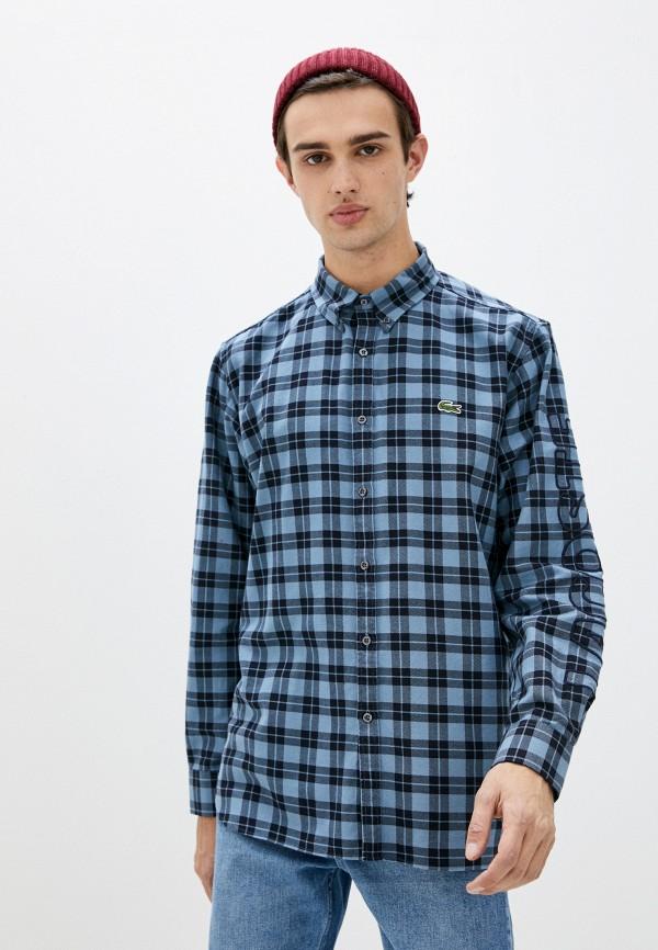 мужская рубашка с длинным рукавом lacoste, голубая
