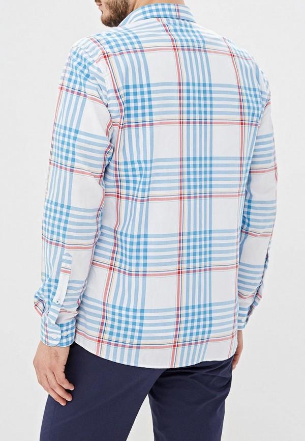 Фото 3 - Мужскую рубашку U.S. Polo Assn. разноцветного цвета