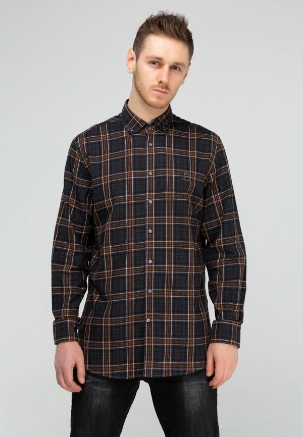 мужская рубашка с длинным рукавом campione, коричневая