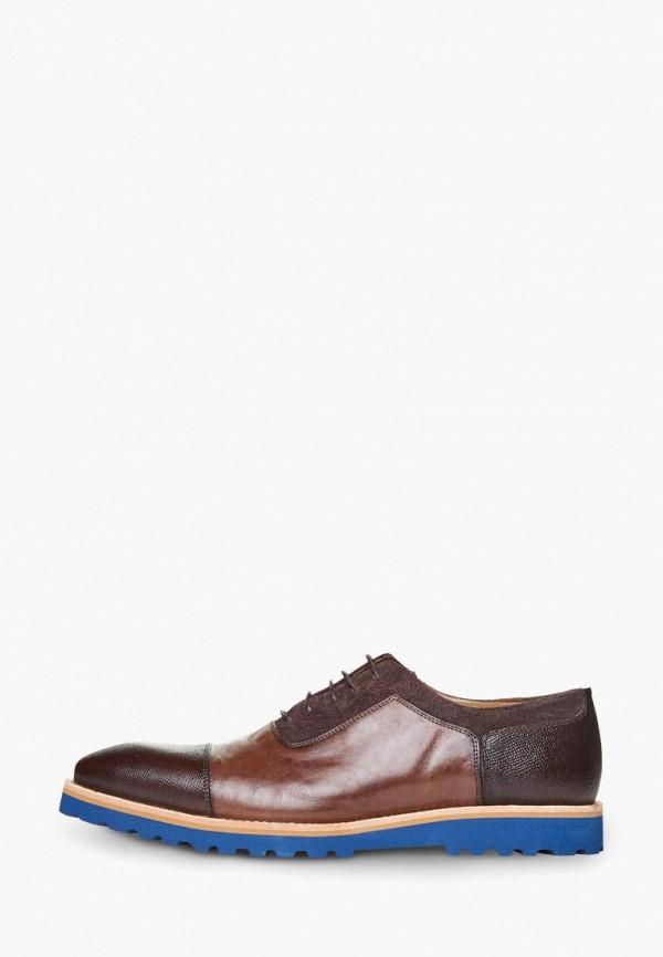 мужские туфли campione, коричневые