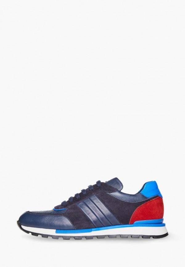 мужские кроссовки campione, синие