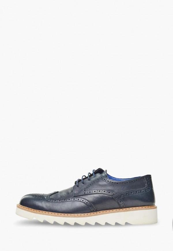 мужские туфли campione, синие