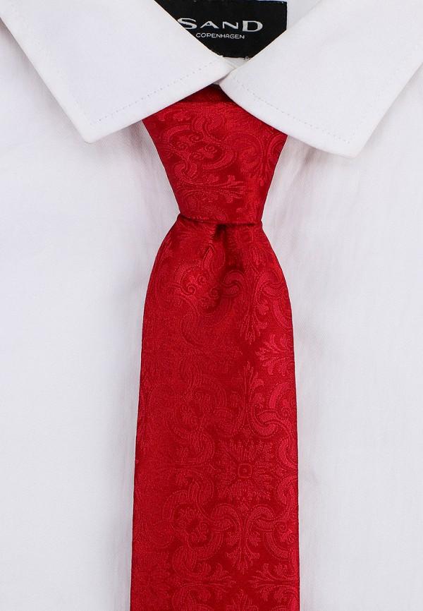 Фото 3 - Мужской галстук Ir.Lush красного цвета