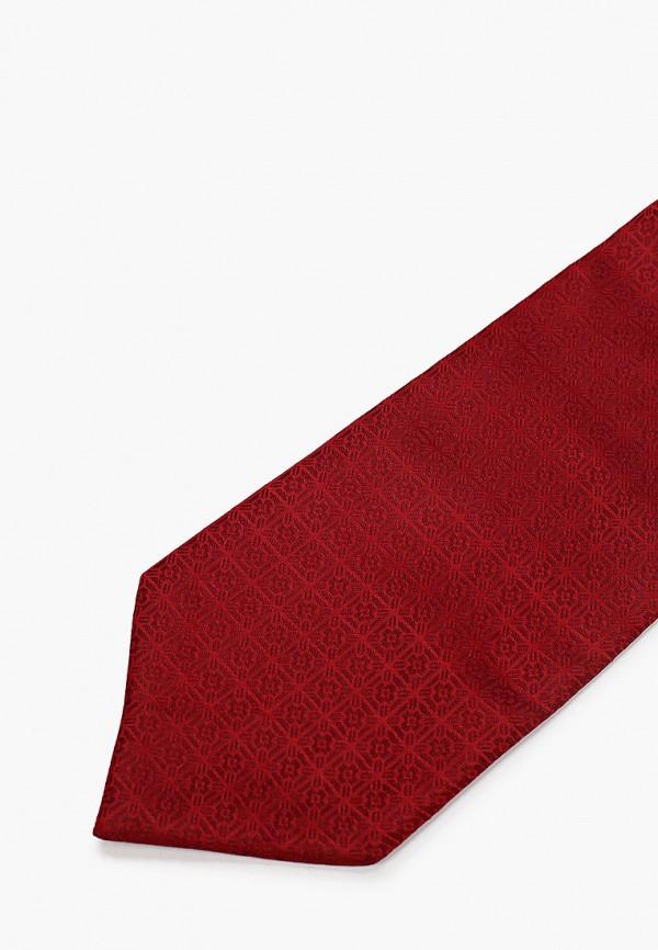 Фото 2 - Мужской галстук Ir.Lush бордового цвета