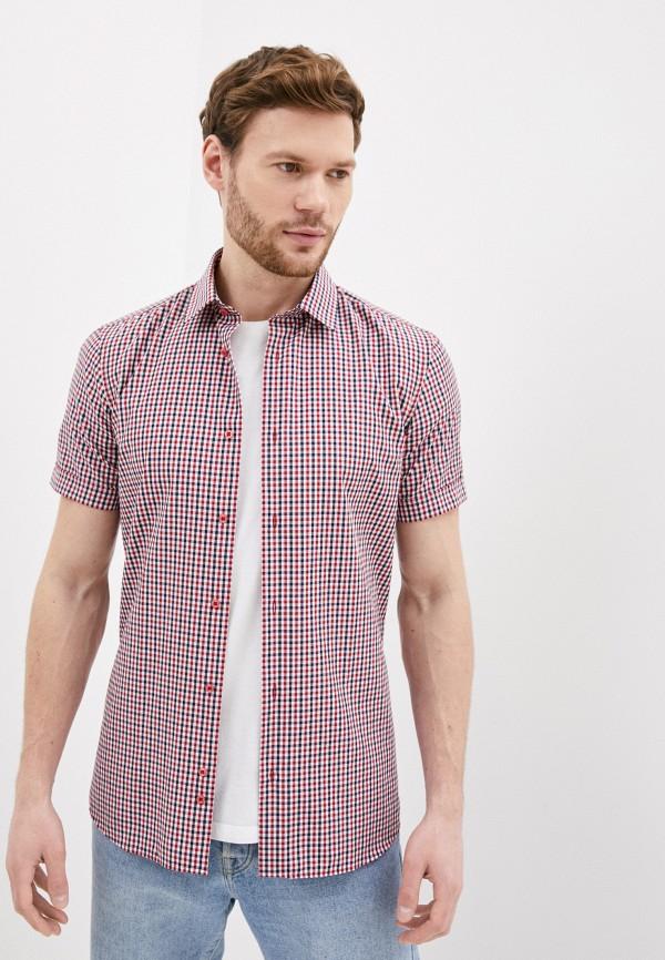 Рубашка Bazioni цвет разноцветный