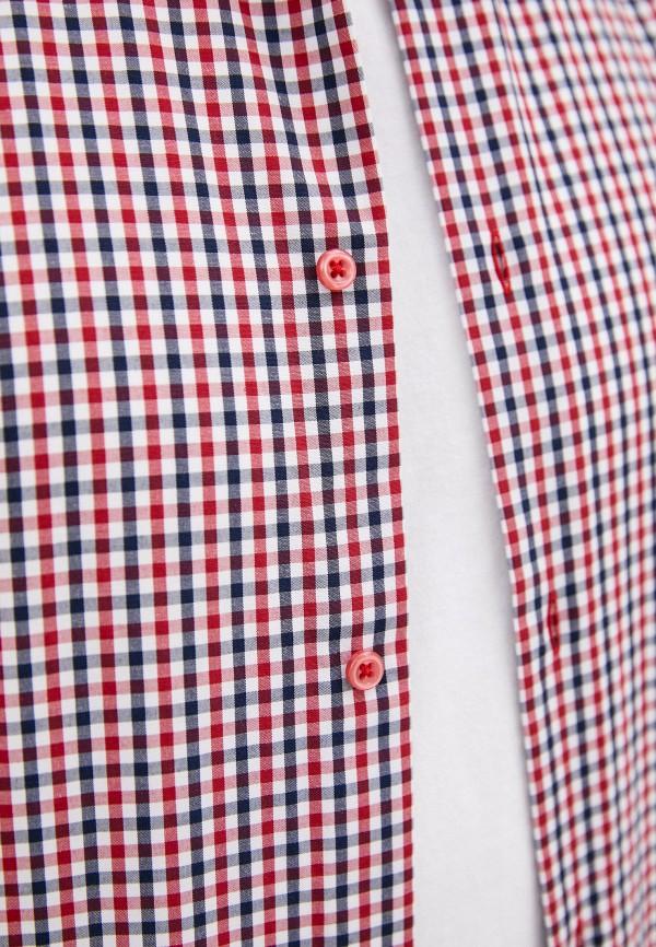 Рубашка Bazioni цвет разноцветный  Фото 4