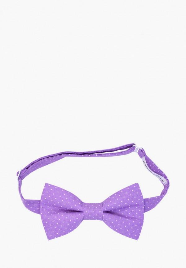 мужские галстуки и бабочки rainbowtie, фиолетовые