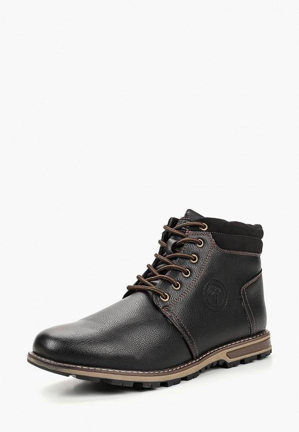 Купить Ботинки T.Taccardi, mp002xm23t5r, коричневый, Осень-зима 2018/2019