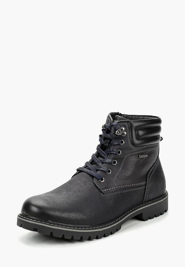 Купить Ботинки T.Taccardi, mp002xm23t74, синий, Осень-зима 2018/2019
