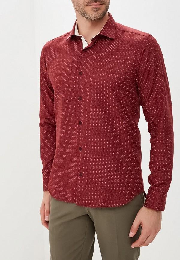 Купить Рубашка Bawer, MP002XM23TJF, бордовый, Весна-лето 2018