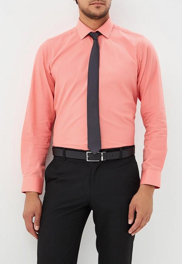 Рубашка Biriz Biriz MP002XM23TL4 рубашка biriz biriz mp002xm0yfcd