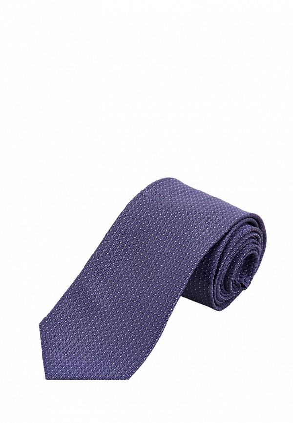 мужские галстуки и бабочки stenser, фиолетовые